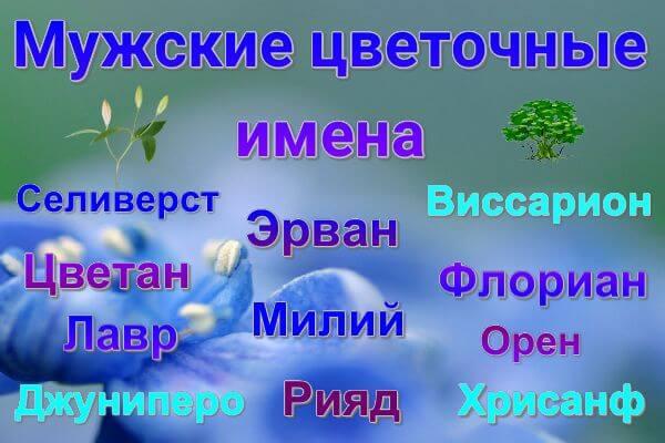 muzhskie-tsvetochnye-imena