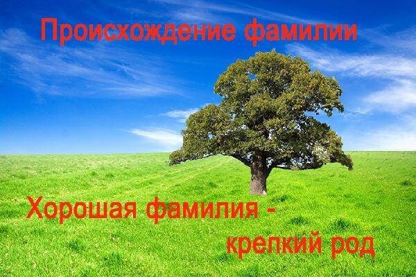 proiskhozhdenie_familii