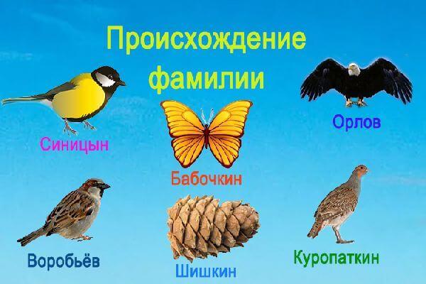 proiskhozhdenie_familii_sposoby-obrazovaniya3