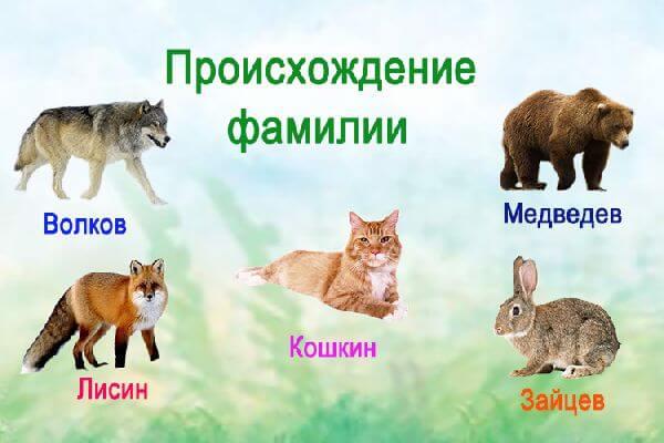 proiskhozhdenie_familii_sposoby-obrazovaniya6