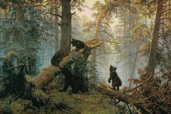 v_chem_tsennost_kartin-mishki-v-sosnovom-lesu